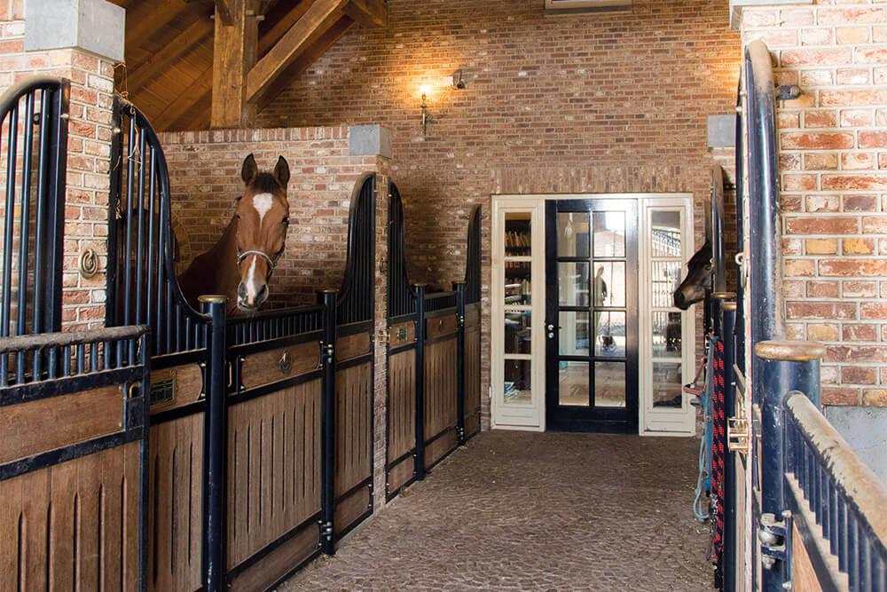 arthur paardenboxen